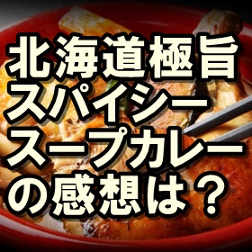 北海道極旨スパイシースープカレー