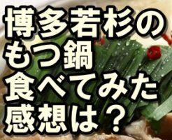 博多若杉 もつ鍋